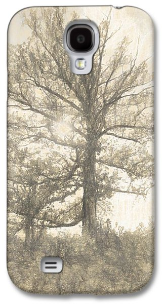 The Sycamore Galaxy S4 Case by Dan Sproul