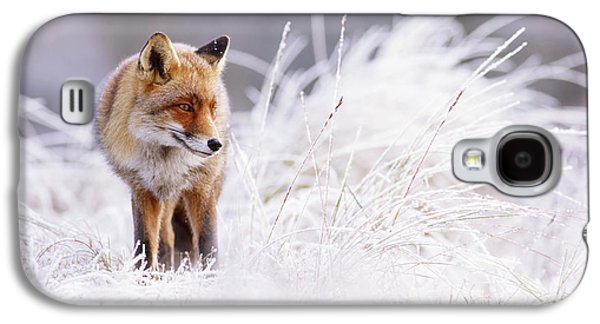 The Thinker - Red Fox In A Wintery Landscape Galaxy S4 Case