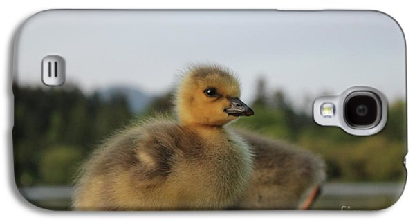 The Ugly Duckling Galaxy S4 Case