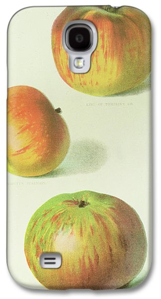 Three Apples Galaxy S4 Case