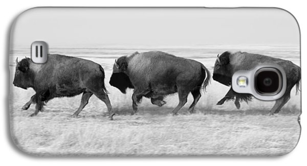 Three Buffalo In Black And White Galaxy S4 Case