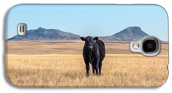 Three Buttes Steer Galaxy S4 Case by Todd Klassy