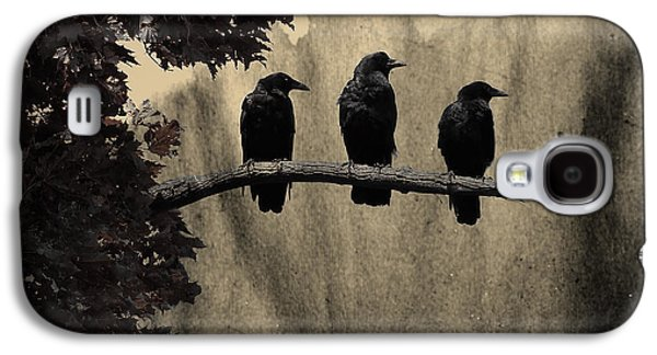Three Ravens Branch Out Galaxy S4 Case