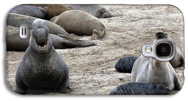 Three Seals In Harmony Galaxy S4 Case by Michael Riley
