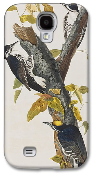 Three Toed Woodpecker Galaxy S4 Case by John James Audubon