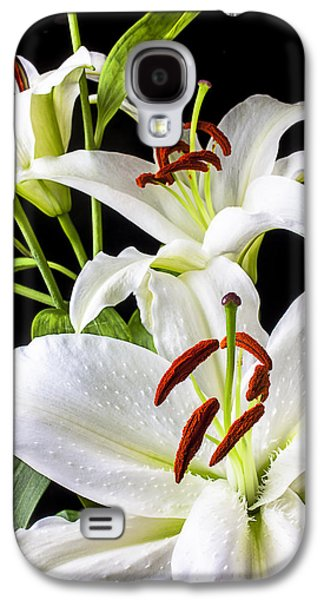 Lily Galaxy S4 Case - Three White Lilies by Garry Gay