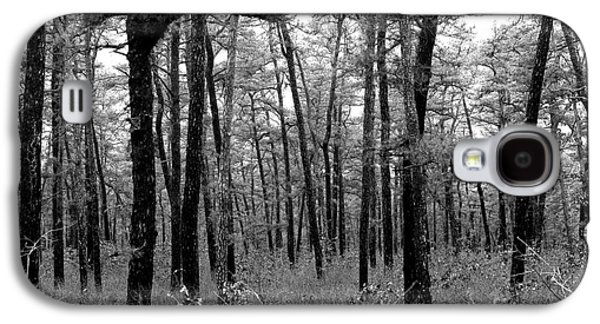 Through The Pinelands Galaxy S4 Case