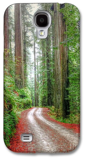 Through The Redwood Forest Galaxy S4 Case