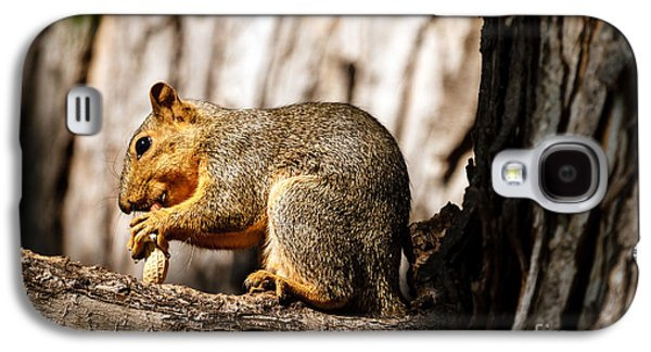 Time For A Peanut Galaxy S4 Case by Robert Bales