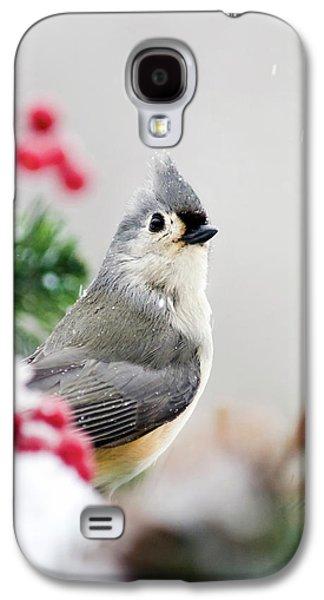 Titmouse Bird Portrait Galaxy S4 Case by Christina Rollo