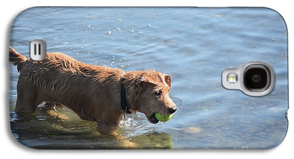 Toller Puppy Dog Playing In Shallow Water Galaxy S4 Case by DejaVu Designs