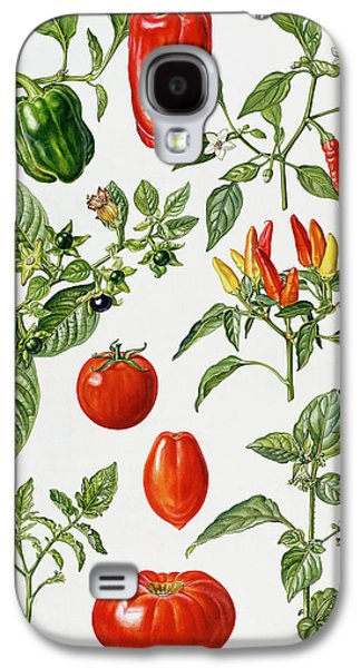 Pepper Paintings Galaxy S4 Cases - Tomatoes and related vegetables Galaxy S4 Case by Elizabeth Rice