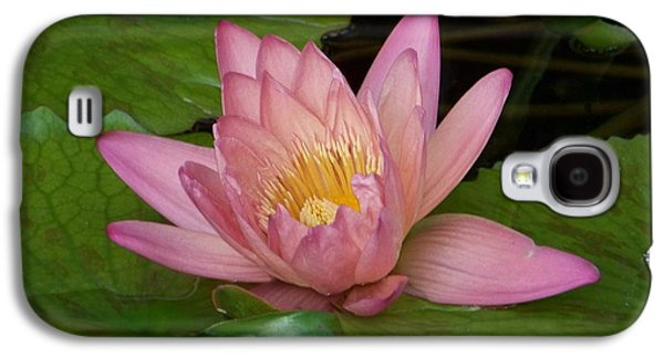 Lilly Pad Galaxy S4 Cases - Touch of Pink Galaxy S4 Case by Karen Wiles