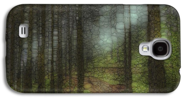 Trail Series 6 Galaxy S4 Case by Jack Zulli