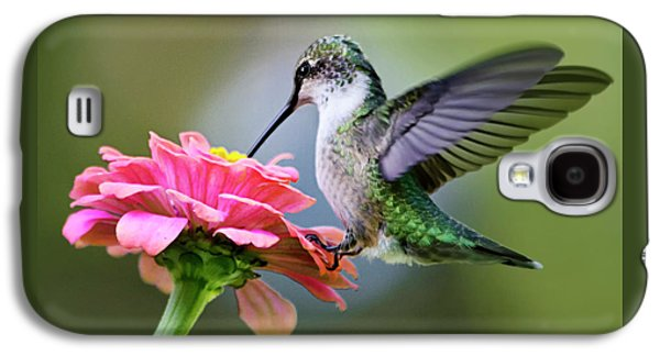 Tranquil Joy Hummingbird Square Galaxy S4 Case
