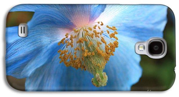 Translucent Blue Poppy Galaxy S4 Case by Carol Groenen