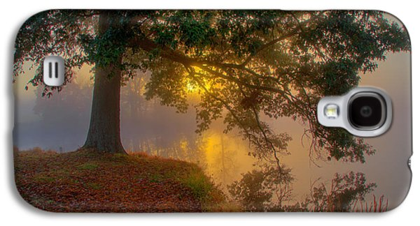Tree In Fog Galaxy S4 Case