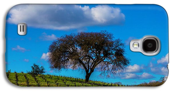Tree In Vineyard With Clouds Galaxy S4 Case by Garry Gay