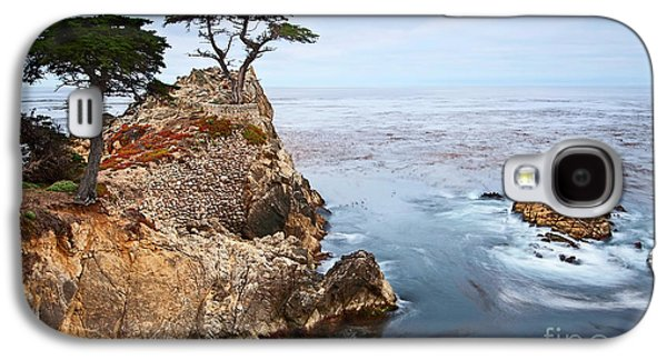 Tree Of Dreams - Lone Cypress Tree At Pebble Beach In Monterey California Galaxy S4 Case