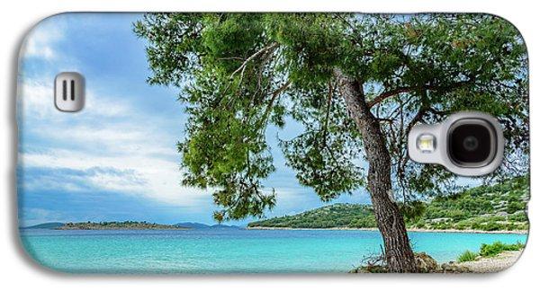 Tree On Northern Dalmatian Coast Beach, Croatia Galaxy S4 Case