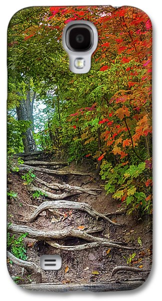 Tree Roots On A Trail Galaxy S4 Case by Art Spectrum
