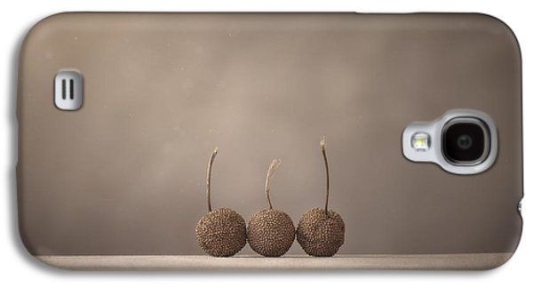 Tree Seed Pods Galaxy S4 Case by Scott Norris