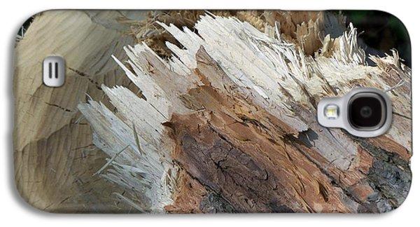 Tree Stump Galaxy S4 Case