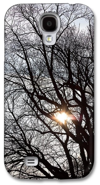 Galaxy S4 Case featuring the photograph Tree With A Heart by James BO Insogna