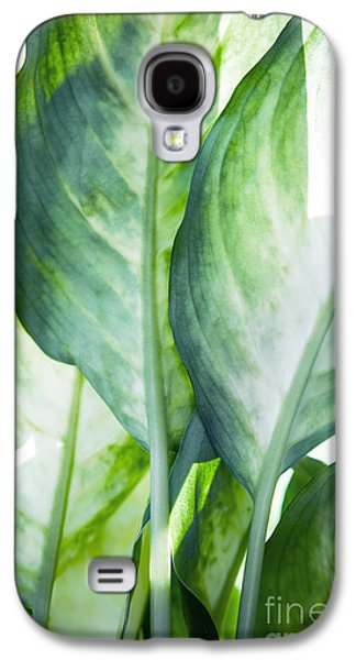 Tropic Abstract  Galaxy S4 Case