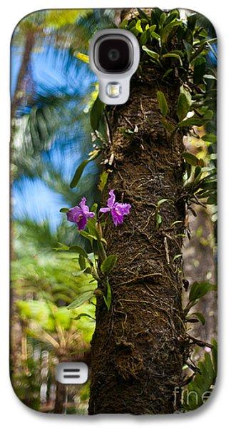 Tropical Beauty Galaxy S4 Case by Mike Reid