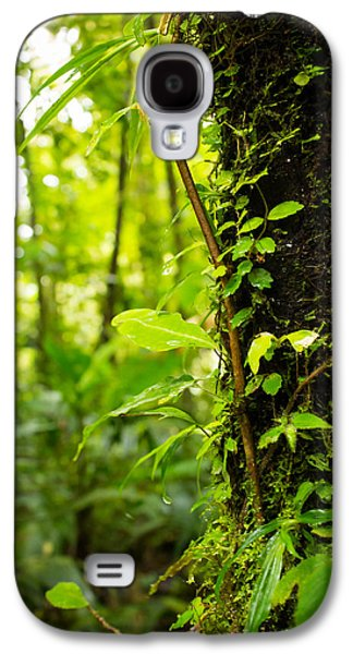 Trunk Of The Jungle Galaxy S4 Case by Nicklas Gustafsson