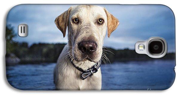 Tucker Galaxy S4 Case by Leslie Leda