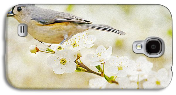 Titmouse Galaxy S4 Case - Tufted Titmouse With Seed by Laura D Young