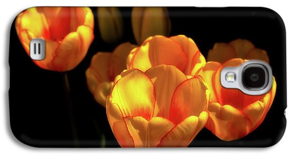 Tulip Festival Participants Galaxy S4 Case