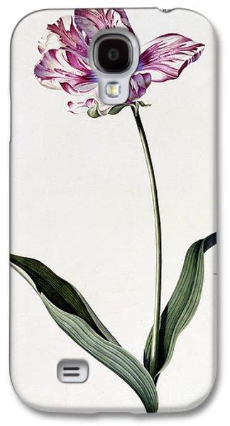 Tulip Galaxy S4 Case by Georg Dionysius Ehret