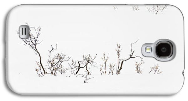 Twigs In Snow Galaxy S4 Case