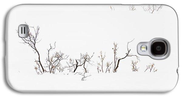 Twigs In Snow Galaxy S4 Case