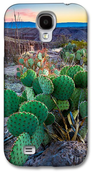 Twilight Prickly Pear Galaxy S4 Case by Inge Johnsson