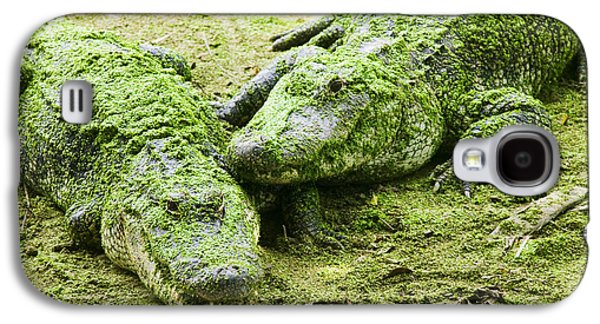 Two Alligators Galaxy S4 Case by Garry Gay