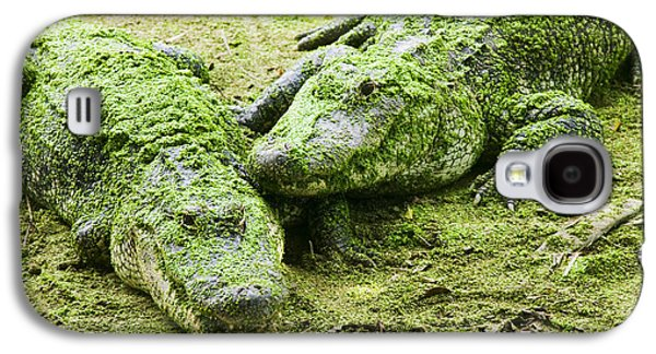 Two Alligators Galaxy S4 Case