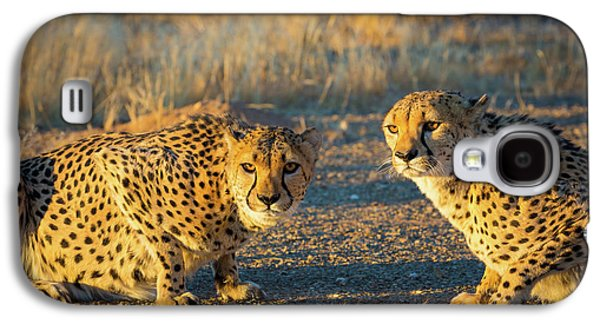 Two Cheetahs Galaxy S4 Case by Inge Johnsson