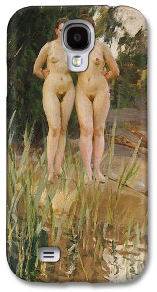 Two Friends  Galaxy S4 Case by Anders Leonard Zorn