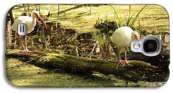 Two Ibises On A Log Galaxy S4 Case by Carol Groenen