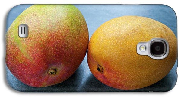 Two Mangos Galaxy S4 Case by Elena Elisseeva