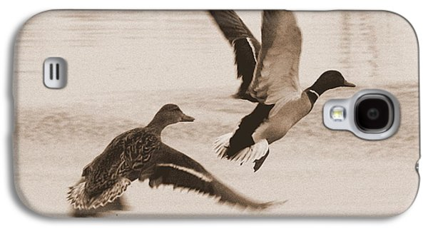Two Winter Ducks In Flight Galaxy S4 Case by Carol Groenen