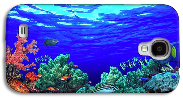 Underwater View Of Pallid Triggerfish Galaxy S4 Case by Panoramic Images