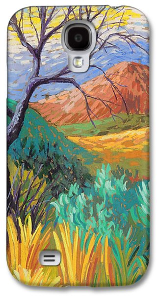 Van Gogh In Thefranklins Galaxy S4 Case