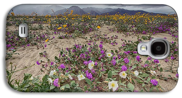 Verbena And Primrose Galaxy S4 Case by Peter Tellone