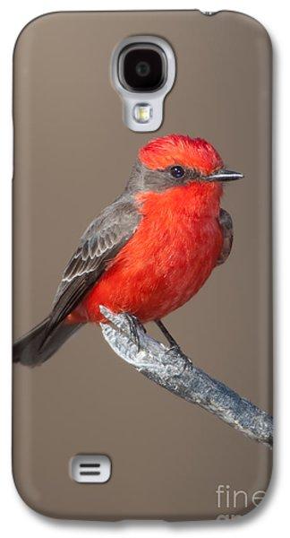 Vermilion Flycatcher Galaxy S4 Case