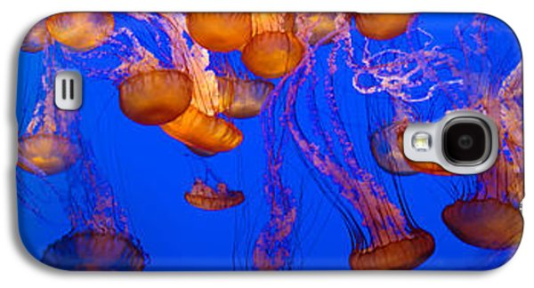 View Of Jelly Fish Underwater Galaxy S4 Case by Panoramic Images